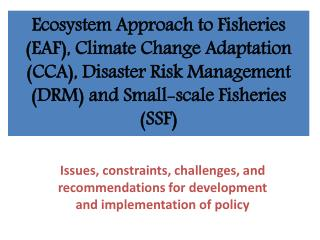 Issues, constraints, challenges, and recommendations for development and implementation of policy