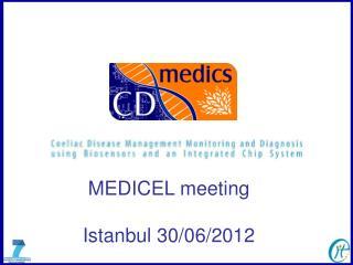 MEDICEL meeting Istanbul 30/06/2012