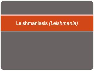 Leishmaniasis  (Leishmania)