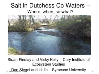 Salt in Dutchess Co Waters – Where, when, so what?