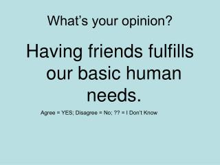 What's your opinion?