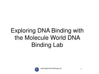 Digital-World-Biology