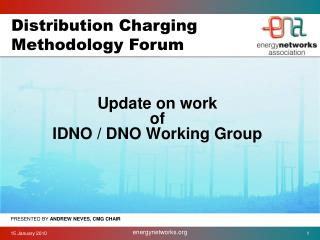 Update on work of  IDNO / DNO Working Group