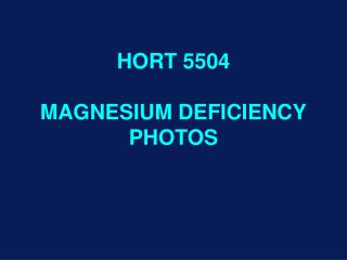 HORT 5504 MAGNESIUM DEFICIENCY PHOTOS