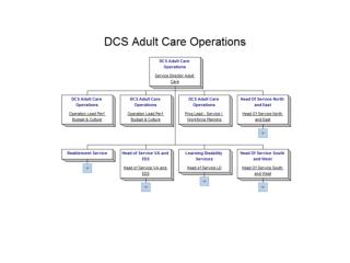 5 RFI 3484 DCS Adult Social Care