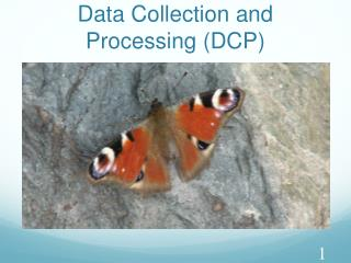 Data Collection and Processing (DCP)