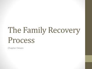 The Family Recovery Process