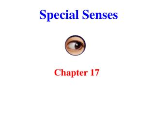 Special Senses