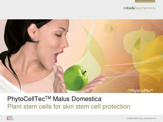 PhytoCellTec TM  Malus Domestica Plant stem cells for skin stem cell protection