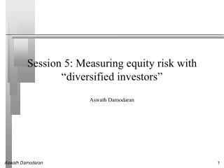 """Session 5: Measuring equity risk with  """" diversified investors """""""