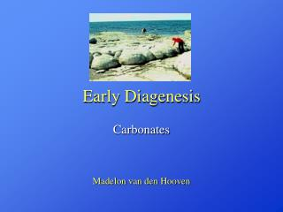 Early Diagenesis
