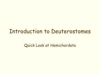 Introduction to Deuterostomes