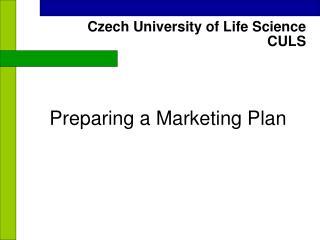 Preparing a Marketing Plan