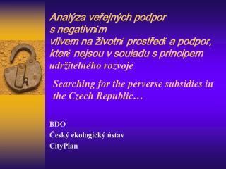 BDO Český ekologický ústav CityPlan
