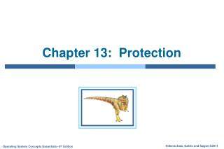 Chapter 13:  Protection