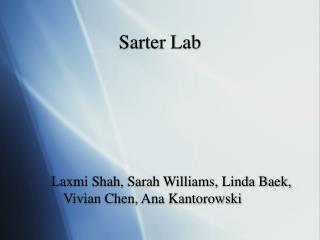 Sarter Lab