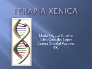 Terapia  xénica