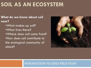 SOIL AS AN ECOSYSTEM