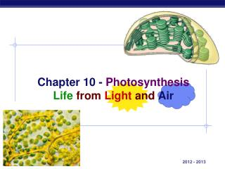 Chapter 10 -  Photosynthesis Life from Light  and Air