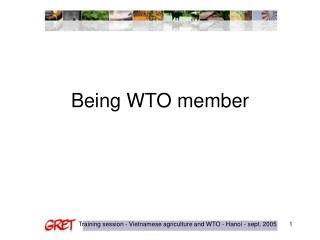 Being WTO member
