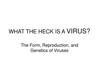 WHAT THE HECK IS A  VIRUS?
