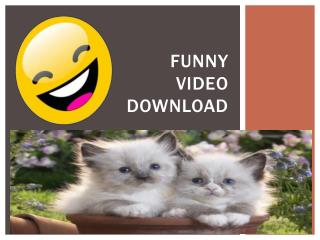 Funny Video Download