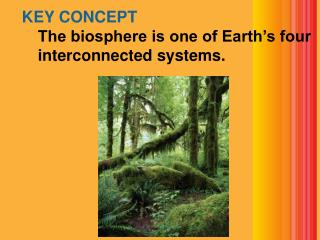KEY CONCEPT  The biosphere is one of Earth's four interconnected systems.