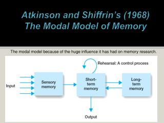 Atkinson and  Shiffrin�s  (1968)  The Modal Model of Memory