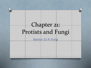Chapter 21:  Protists and Fungi