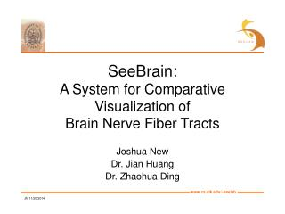 SeeBrain: A System for Comparative Visualization of Brain Nerve Fiber Tracts