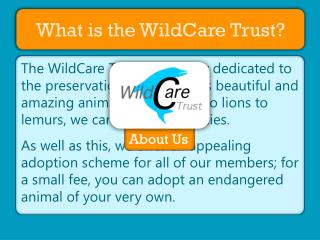 What is the WildCare Trust?