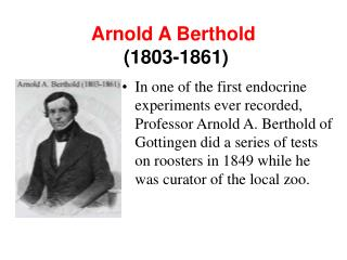 Arnold A Berthold  (1803-1861)