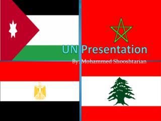 UN Presentation