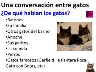 Una conversación entre gatos ¿De qué hablan los gatos? Ratones  Su familia Otros gatos del barrio
