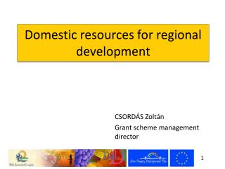 Domestic resources for regional development