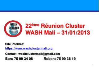 22 ème Réunion Cluster WASH Mali –  31/01/2013