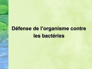 D�fense de l�organisme contre  les bact�ries