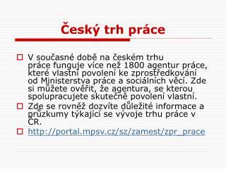 Český trh práce