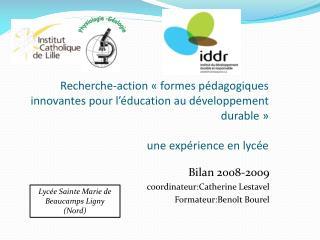 Bilan 2008-2009  coordinateur:Catherine Lestavel  Formateur:Benoît Bourel