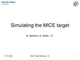 Simulating the MICE target
