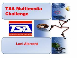 TSA Multimedia Challenge