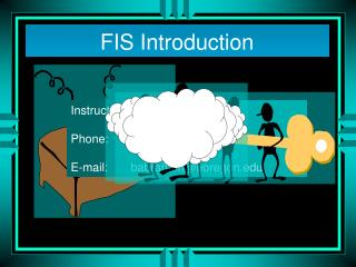 FIS Introduction
