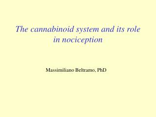 The cannabinoid system and its role in nociception