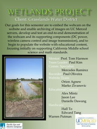 Wetlands Project