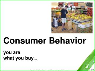 Consumer Behavior you are  what you buy …