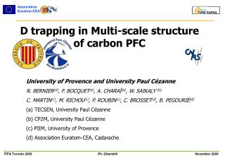 D trapping in Multi-scale structure of carbon PFC