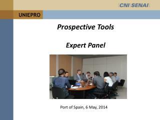 Prospective Tools Expert Panel