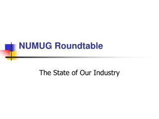 NUMUG Roundtable