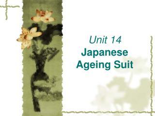 Unit 14 Japanese Ageing Suit