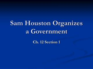 Sam Houston Organizes  a Government